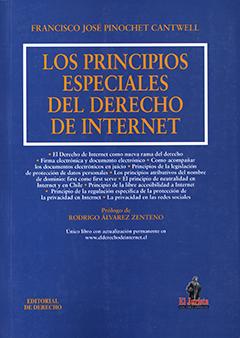 Los principios especiales del derecho de Internet