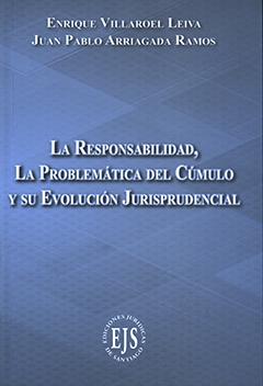 La responsabilidad, la problemática del cúmulo y su evolución jurisprudencial
